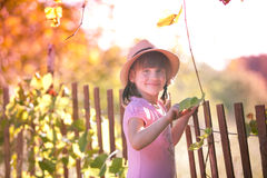 Girl in the Sun. Little girl enjoys a sunny afternoon Royalty Free Stock Image