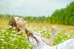 Girl in a sundress lies in camomile field Stock Image