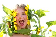 Girl and sunflower stock image