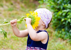 Girl with sunflower Royalty Free Stock Photo