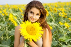 Girl in sunflower field holding stock photography