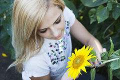 Girl in sunflower Stock Photography
