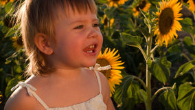 Girl and sunflowers Stock Images