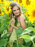 Girl with a sunflowers Stock Photography