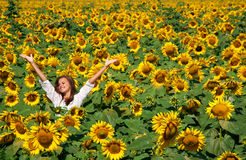 Girl in sunflowers Stock Photography