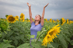 Girl in sunflowers Royalty Free Stock Images