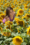 Girl in a sunflowers field Stock Image
