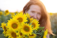 Girl and sunflowers stock photography