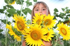 Girl with sunflowers outdoors Royalty Free Stock Photo