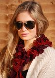 Girl with sunglasses 1 Stock Images