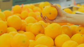 The girl in a supermarket selects the fruit. Woman choosing orange at fruit vegetable supermarket stock video