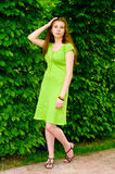 Girl is surrounded by greenery Stock Photos
