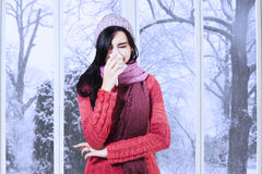 Girl with sweater having flu. Young girl having flu and blowing her nose at handkerchief, shot at home in winter day Stock Image