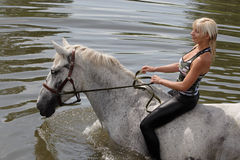 Girl swiming with her horse in river. Pretty blond girl going for a swim with her horse Stock Images