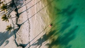 Girl swimmin on the inflatable ring. Beach with palm trees view - from the sky drone . The photo made in Dominican Republic. A beach of Juanillo. Girl swimmin on Royalty Free Stock Photo