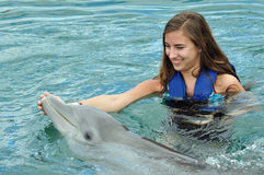 Girl swimming with Dolphin. Young girl swimming with Dolphin in pool Royalty Free Stock Image