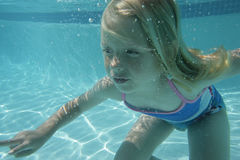 Girl in swimming pool. A young blond girl swimming underwater in a pool Stock Photo