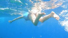 Girl Swimming in the sea. Girl swimming underwater over coral reefs with Fishes in a tropical sea Full HD 1080 Video stock video