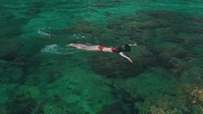 Girl swims with a mask in ocean.  stock footage