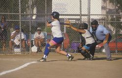 Girl swinging bat at Girls Softball game Stock Images