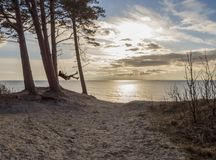 Girl swinging on a swing in a pine forest on a sand dune over the Baltic Sea in Klaipeda, Lithuania royalty free stock photos