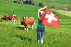Girl with the Swiss flag against cows Stock Photography