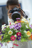 Girl take flower photo Stock Images