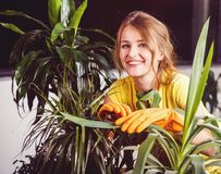 Girl Takes Care of Plants Royalty Free Stock Photos