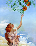 Girl takes oranges from the sky Stock Photo