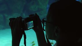 Girl takes pictures of colorful underwater world stock footage video. Girl takes pictures of a colorful underwater world stock footage video stock footage