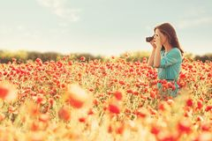 Girl taking photographs with camera in flower meadow. Photographer young woman taking photographs with camera in red poppies field on sunny day stock photo