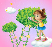 A girl taking pictures near the ladder plants Royalty Free Stock Image