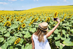 A girl taking selfie in a sunflower farm. A young lady in the middle of a big sunflower farmland taking self portrait selfie with smartphone during bright summer Royalty Free Stock Photo