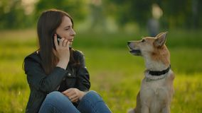Girl talking on the phone while walking with a dog in the park. stock video footage