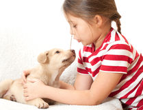 Girl talking with  puppy Stock Images