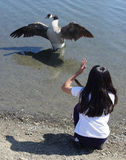 Girl talking to a goose. A girl talking to a goose royalty free stock photo