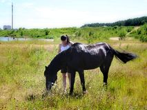 The girl is talking to the horse. Royalty Free Stock Images