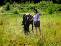 The girl is talking to the horse. Royalty Free Stock Photography