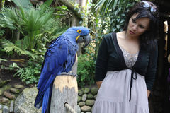 Girl talking to a parrot. Girl talkincurious girl communicates with a big blue parrotg to a parrot royalty free stock photo