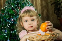 Girl with tangerines in Christmas Stock Photography