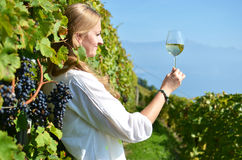 Girl tasting white wine among vineyards Royalty Free Stock Photography