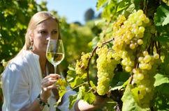 Girl tasting wine Royalty Free Stock Image
