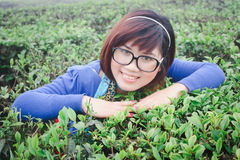 Girl in tea garden Royalty Free Stock Photo
