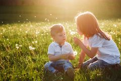 The girl teaches her brother to blow off the dandelion. royalty free stock images