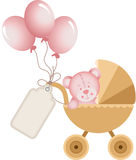 Girl teddy bear in baby carriage with label tag Stock Photos