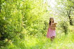Girl with teddy Royalty Free Stock Photography