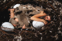 Girl teen in bird's nest Stock Photos