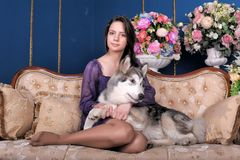 Girl teen and dog malamute on sofa Royalty Free Stock Images