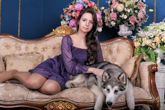 Girl teen and dog malamute on sofa Stock Images