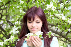 The girl-teenager hold in hand  branch with flower Stock Image